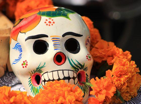 sugar skull with orange flowers for dia de los muertos